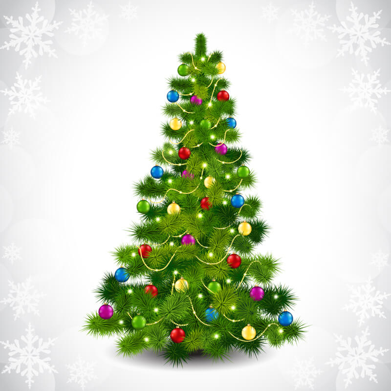 The History Of The Christmas Tree From Europe To America